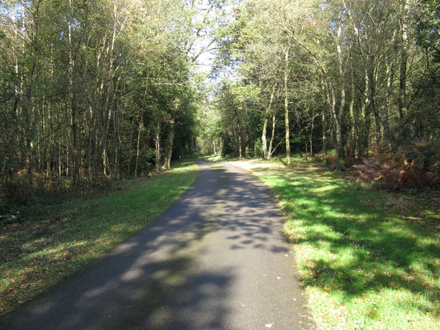 Private road through Access land at Ashdown Forest