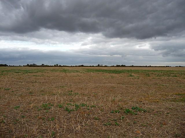 Farmland near Holland Fen (1)