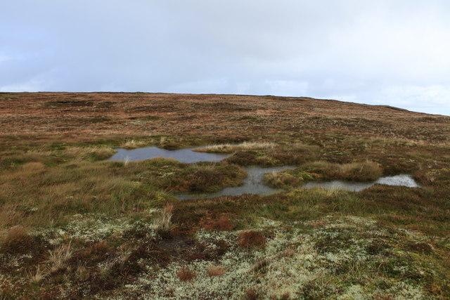 Damp ground above Dwarfie Hamars