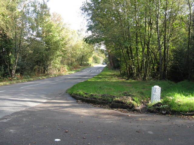 Legsheath Lane heading towards Wych Cross