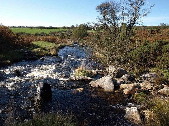 River Plym above Brisworthy