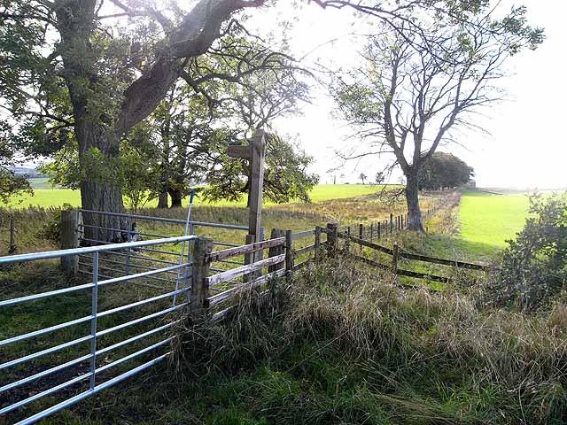 Fenceline near Dryden Greenhill