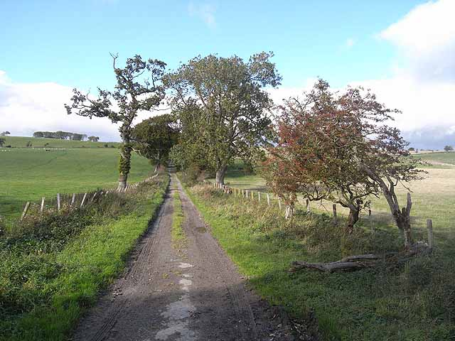 Old road from Synton Mill to Greenhill