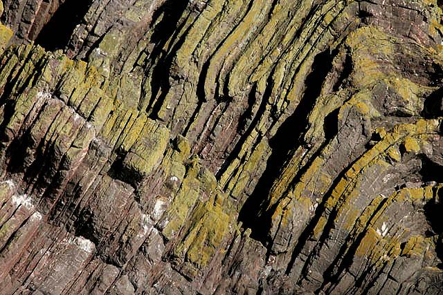 Folded rock strata at Hurker's Haven