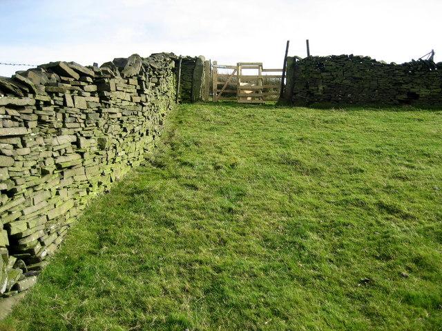 Upland Pasture on edge of Extwistle Moor