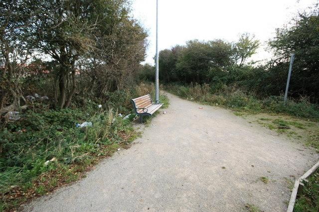 Litter Strewn Public Footpath