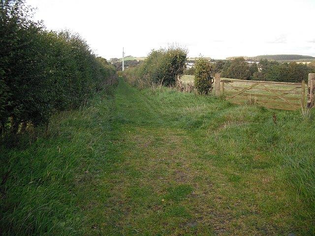 Green lane, Hundalee
