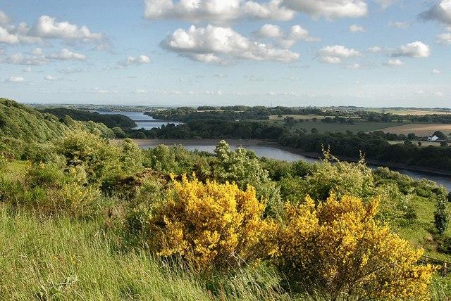 Anglezarke View