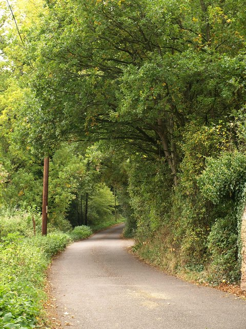 Lane at West Monkton