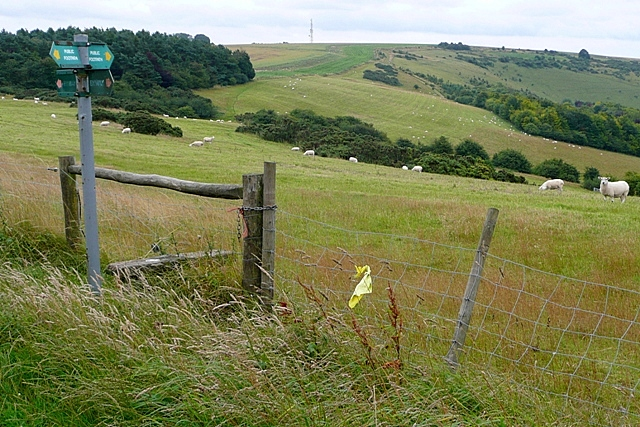 Towards Combe Hill