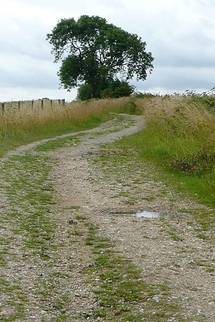 Wayfarer's Walk at Walbury Hill
