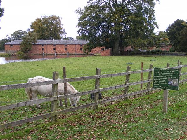 Shugborough Farm