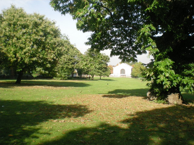 Autumn in Carshalton Park