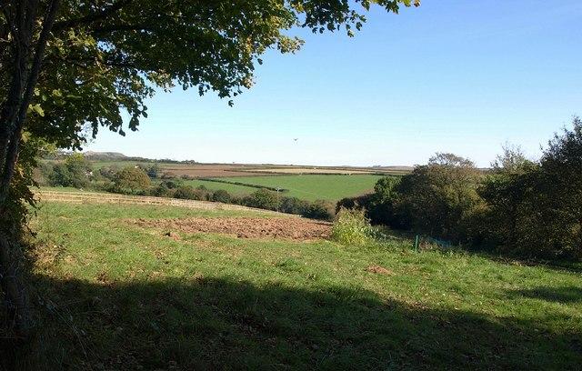 Field near Hartstone Farm