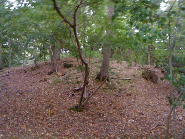 Site of Grist Castle