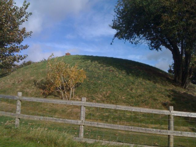Didley Motte close up