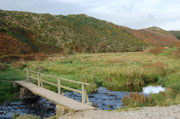 Footbridge over the stream in Gwadn valley near Solva