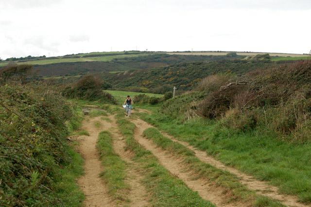 Track south of St Elvis Farm near Solva