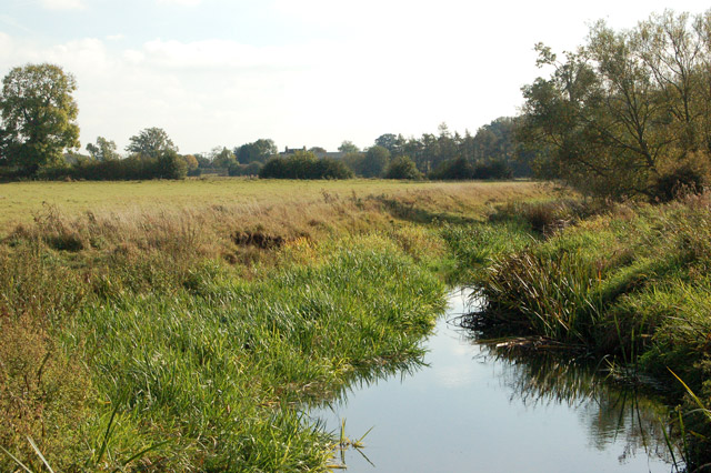 Reed-fringed bank of the River Leam near Eathorpe Park
