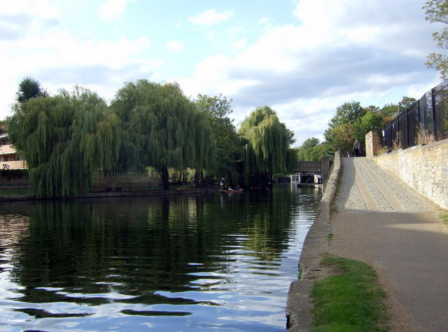 Willows over the water near Old Ford lock