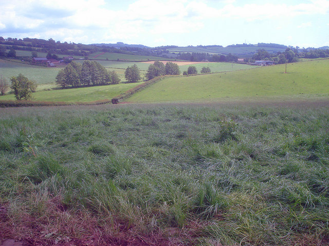 Farmland north of Burton Court