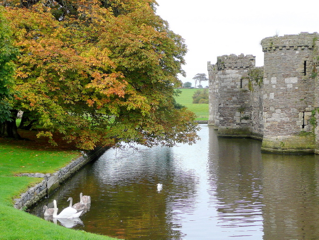 Beaumaris Castle moat