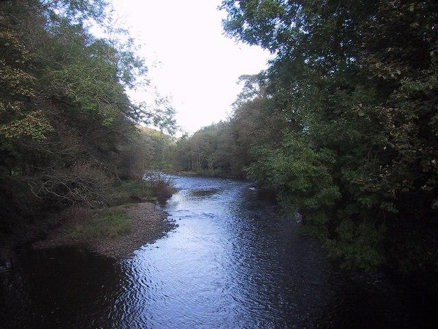 River Exe north of the Iron Bridge