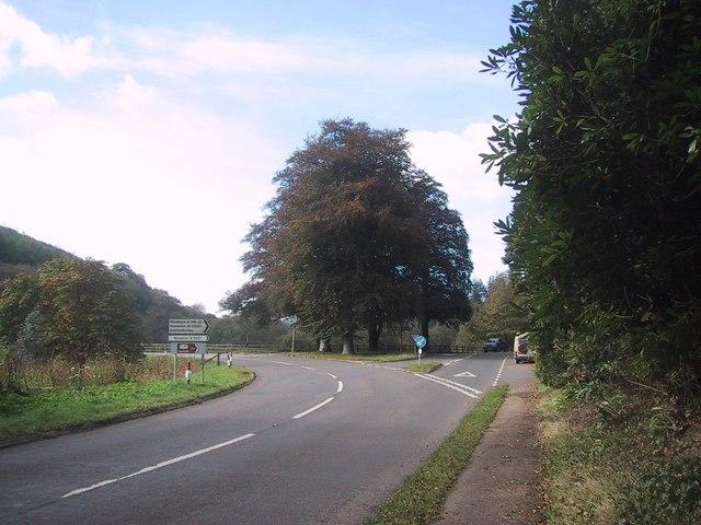 Black Cat Road Junction