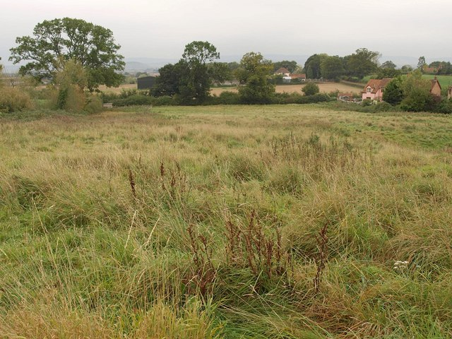 Meadow, West Monkton