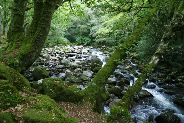 River Plym, Shaugh Bridge