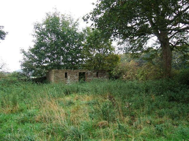 Ruin in the churchyard