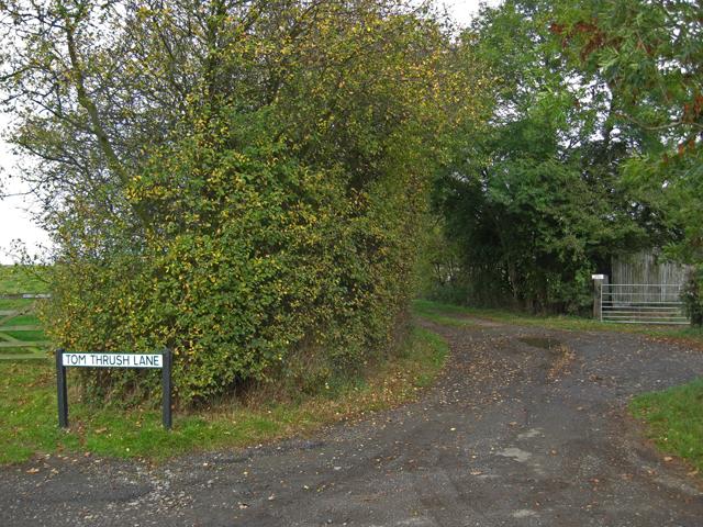 Tom Thrush Lane, Winteringham