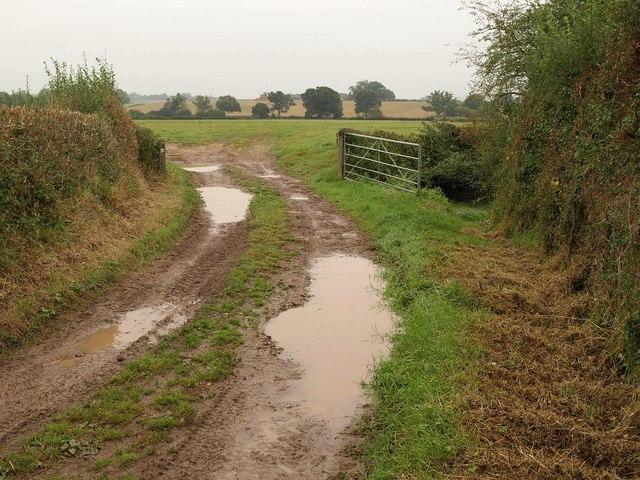 Bridleway near Ham