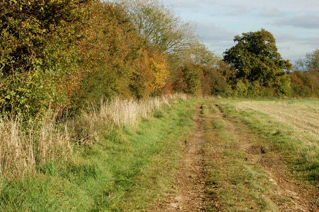 Gypsy Lane, Upper Shuckburgh (4)