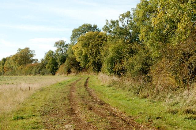 Gypsy Lane, Upper Shuckburgh (5)