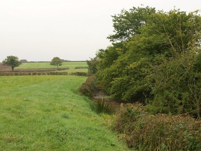 Pond near Ham