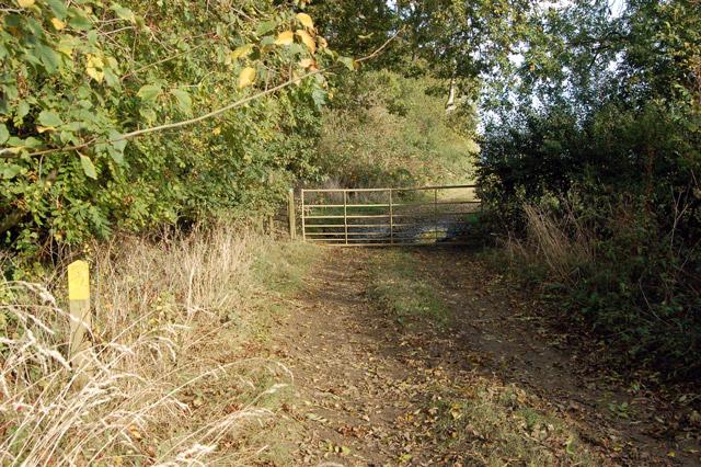 Gypsy Lane, Upper Shuckburgh (8)