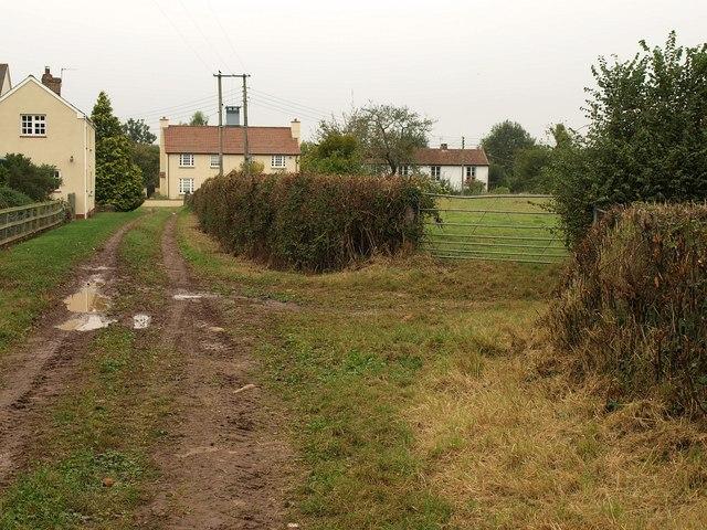 Bridleway, Ham