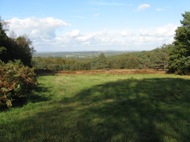 View NW from the edge of Ashdown Forest
