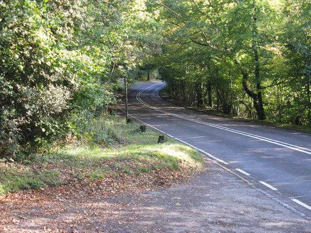 Bus stop near drive for Old Cherry Orchard