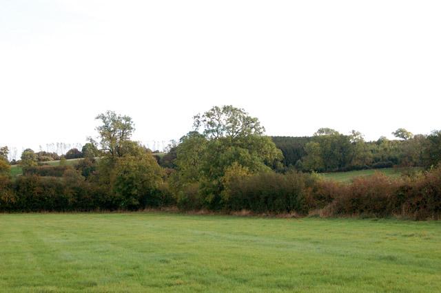 Gentle hills north of Priors Marston