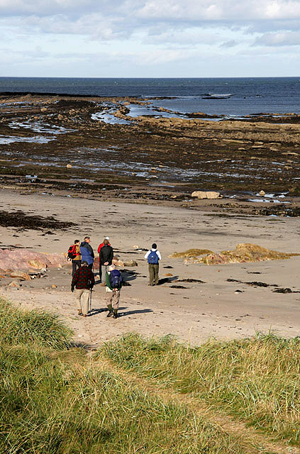 Walkers at Meadow Haven Beach, Berwick-upon-Tweed