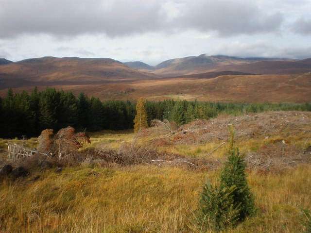 Old clear fell in Beinneun Forest