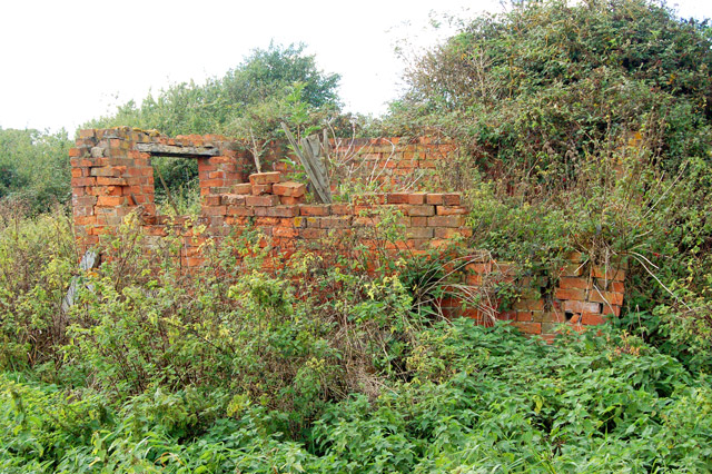 Remains of a small barn near Northfields Farm (2)