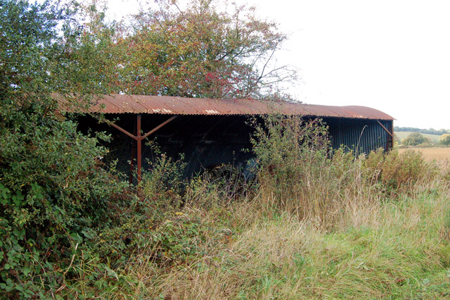 Disused corrugated iron byre near Northfields Farm (1)