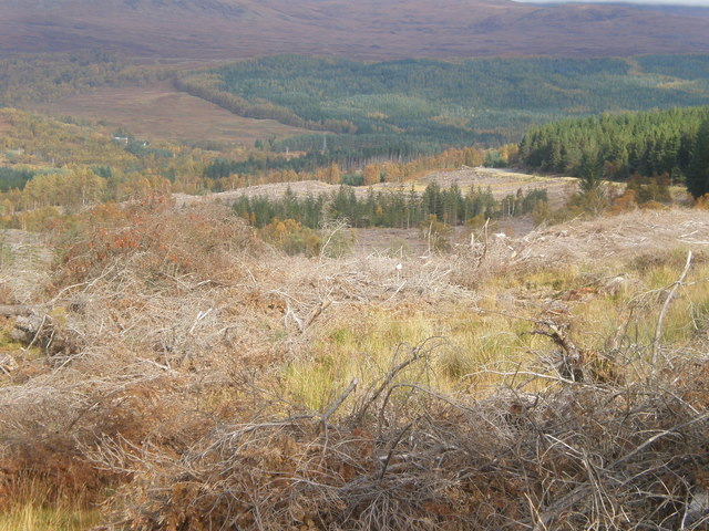 View down to Glen Moriston from clear fell in Beinneun Forest