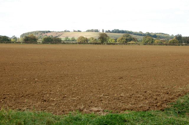 Looking northeast from the footpath near Northfields Farm
