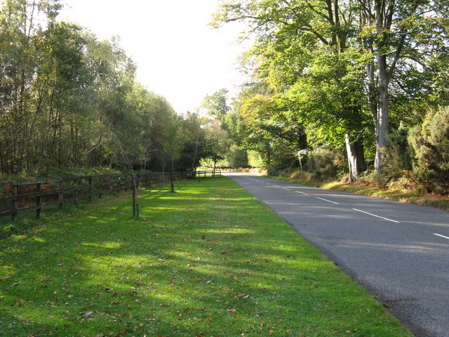 Coleman's Hatch Road alongside the grounds of Ashdown Park Hotel