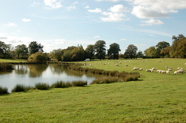 Fishing lake near Northfields Farm (3)