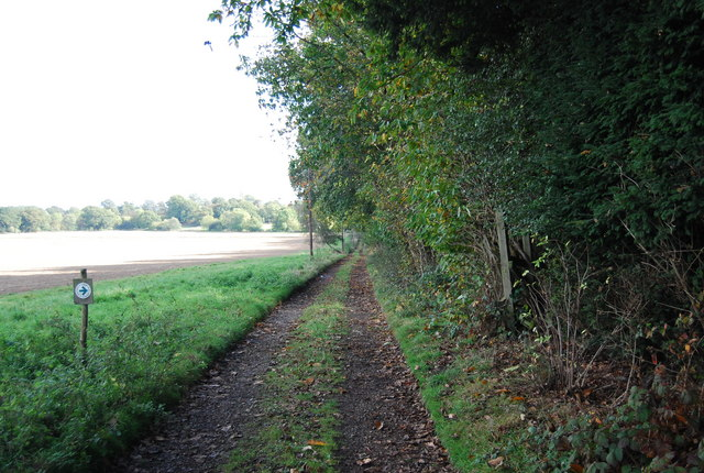 Track on the edge of Home Covert